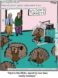 turkeys working out crossfit