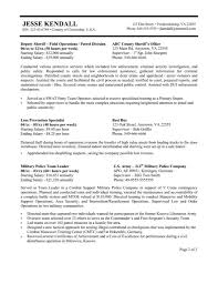 Format Of Resume Federal Government Resume Examples Template