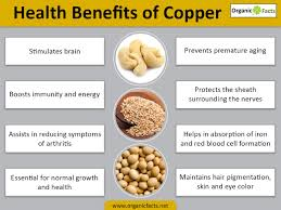 Vitamin Deficiency And Hair Loss 13 Incredible Benefits Of Copper Organic Facts