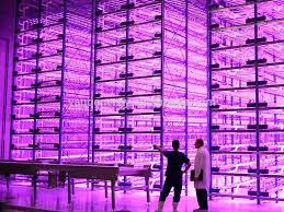 hydroponic led grow lights led grow light bulbs dutchglow org