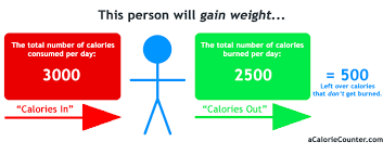 how many calories do you burn standing at your desk calorie counting a guide to calories weight control