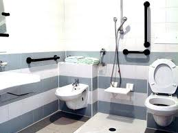 Bathroom Accessories For Senior Citizens Amazing Disabled Bathroom Accessories Elderly Bathroom Design Find