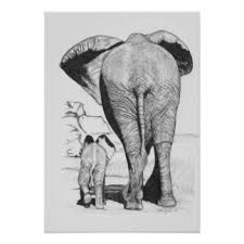 mom and baby elephant art u0026 framed artwork zazzle