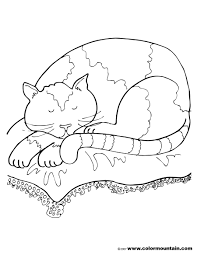 slumber cat color page create a printout or activity