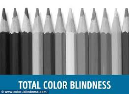 Colour Blind Percentage This Is What The World Looks Like To The Colourblind Daily Mail