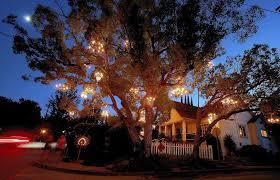 Chandelier Chandelier Tree Is A Twinkling Star In Silver Lake La Times