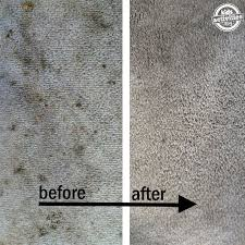 How To Clean Upholstery Naturally Best 25 Homemade Upholstery Cleaner Ideas On Pinterest Diy