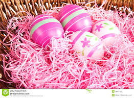 pink easter eggs pink easter eggs in a nest stock photo image of purple 18872722