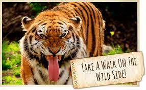 kansas walk in map sunset zoo ks official website official website