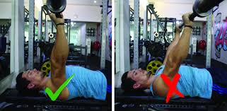 Bench Press Lock Elbows Movement Of The Month Bench Press By Glenn Van Der Veen U2014 Ufit