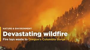 Wild Fire Columbia Gorge by Fire Devastates Oregon U0027s Columbia Gorge And Nature Lovers Video