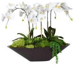 orchid flower arrangements pin by joey on orchids orchid floral arrangement