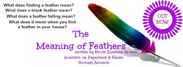 the meaning of feathersspiritual wisdom magazine