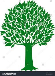green tree isolated on white background stock vector 113093266