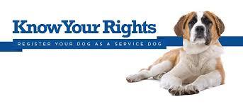 Comfort Dogs Certification Service Dog Certifications Home Facebook