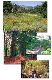 Botanic Garden Santa Barbara Santa Barbara Botanic Gardens