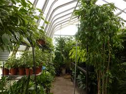 uncategorized choosing greenhouse hgtvgn ideas green home denver