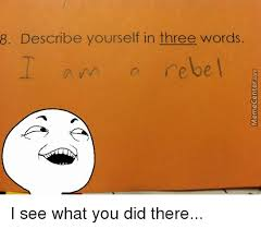 See What You Did There Meme - 8 describe yourself in three words i see what you did there funny