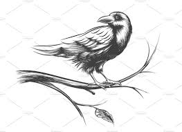 halloween raven background black and white raven or black crow sketches illustrations creative market