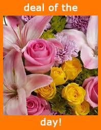 florist naples fl naples florists flowers in naples fl driftwood garden center
