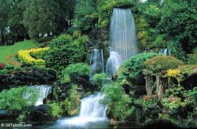 Florida waterfalls images Gil t photo cypress gardens waterfall jpg