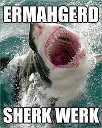 Funny Shark Meme - funny shark week memes