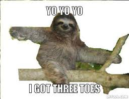 Sloth Meme Images - the sloth hannah s passion blog