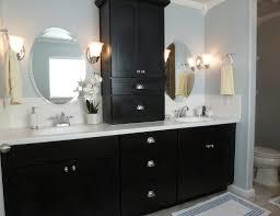 Bathroom Vanity Cabinets Ikea by Cabinet Bathroom Vanities Cabinets Beguiling Bathroom Vanity