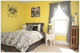 Light Yellow Rug Home Decoration Yellow And Grey Bedroom Mounted Booh Shelf Shag