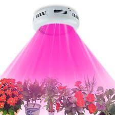 Full Spectrum Led Grow Lights Full Spectrum Led Grow Lights Ebay