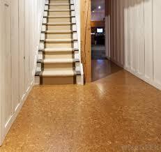 Ideas For Cork Flooring In Kitchen Design Design Floating Cork Flooring Globus Floor Colored And