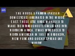 where did the house sparrow originally come from