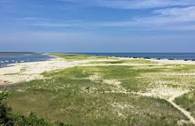 our favorite things to do in cape cod with kids