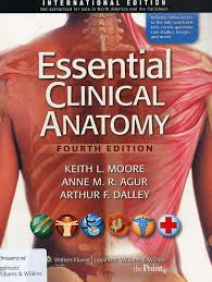 Human Anatomy And Physiology Case Studies Essential Clinical Anatomy Anatomy U0026 Physiology Books