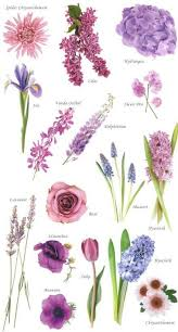 wedding flowers types 16 best flowers images on flower arrangements