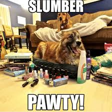 Slumber Party Meme - when you cancel plans to stay in with your dog