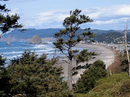cannon beach house vacation rentals oregon coast