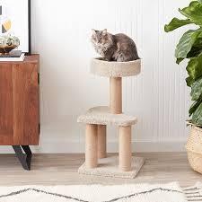 amazon com amazonbasics cat activity tree with scratching posts