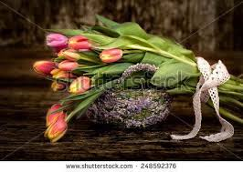 best 25 flower images free ideas on pinterest free images of