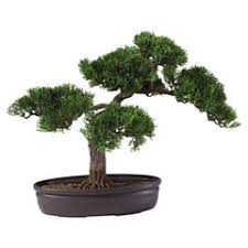 Artificial Plant Decoration Home Artificial Plants Decorative Accents For The Home Jcpenney