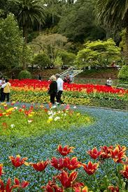 New Zealand Botanical Gardens Wellington Botanic Garden