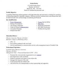 resume examples resume formats for college students internship