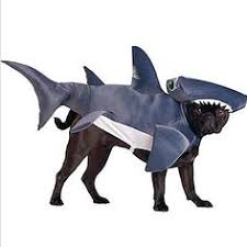 Shark Costume Halloween Aww Fur Shark Costume Furry Stuff Shark