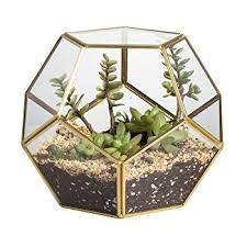 amazon com brass glass pentagon regular dodecahedron geometric