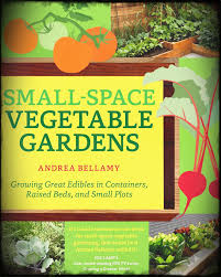tiny gardens pictures to start vegetable gardening in small spaces plan ahead