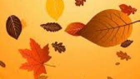 Thanksgiving Wallpapers For Iphone Happy Thanksgiving Wallpaper For Iphone 5 Hd Wallpaper