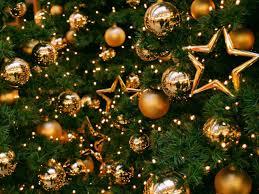 odličja slike drvo pozadine zvijezda vektor novogodišnji