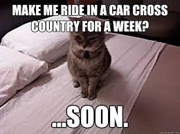 Soon Car Meme - pissed off cat memes quickmeme