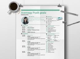 matebe creative cv template 9 resume for expert in gray