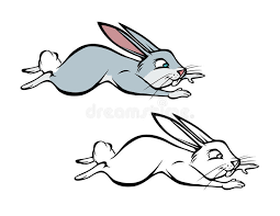 hopping bunny bunny hopping coloring book stock vector illustration of rabbit